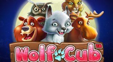 Wolfcub Video Slots