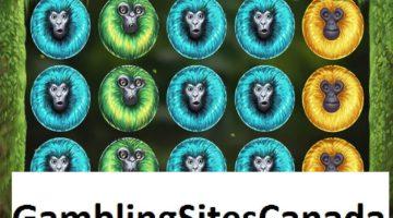 7 Monkeys Slots Game