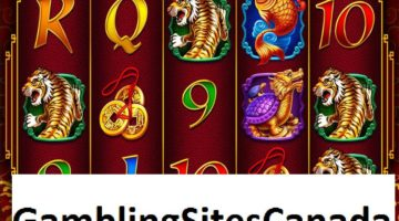 8 Dragons Slots Game