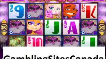 Catsino Slots Game