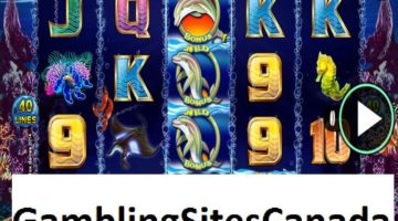 Dolphin Gold Slots Game