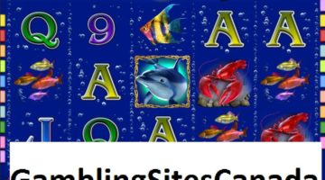 Dolphins Pearl Deluxe Slots Game