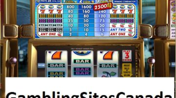 Double Gold Slots Game