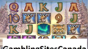 Wild North Slots Game