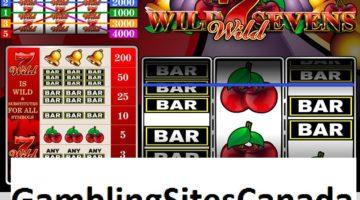 Wild Sevens Slots Game